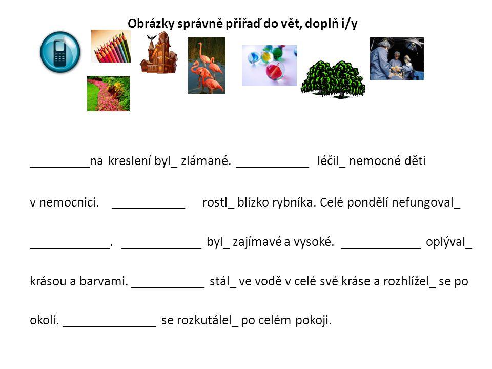 Obrázky správně přiřaď do vět, doplň i/y