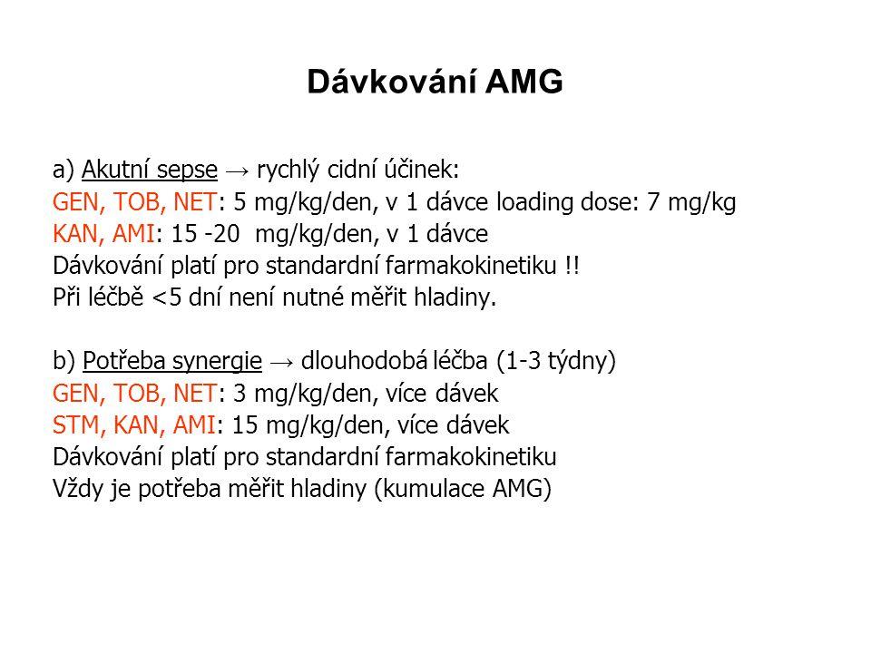 Dávkování AMG a) Akutní sepse → rychlý cidní účinek:
