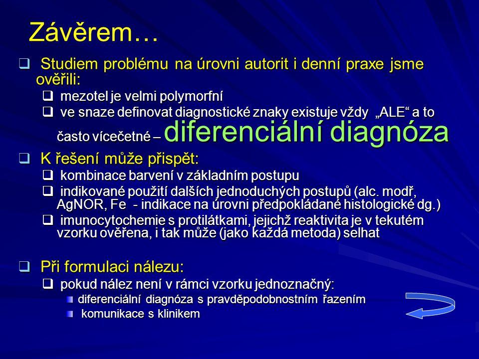 Závěrem… Studiem problému na úrovni autorit i denní praxe jsme ověřili: mezotel je velmi polymorfní.