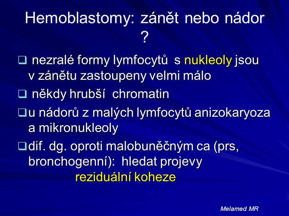 Hemoblastomy: zánět nebo nádor