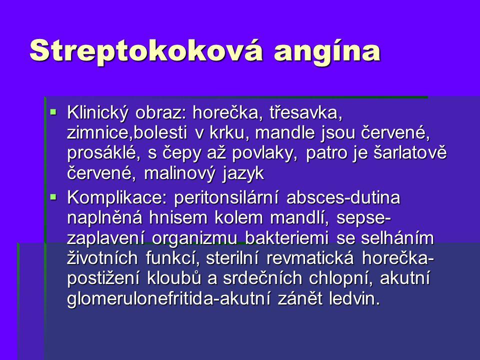 Streptokoková angína