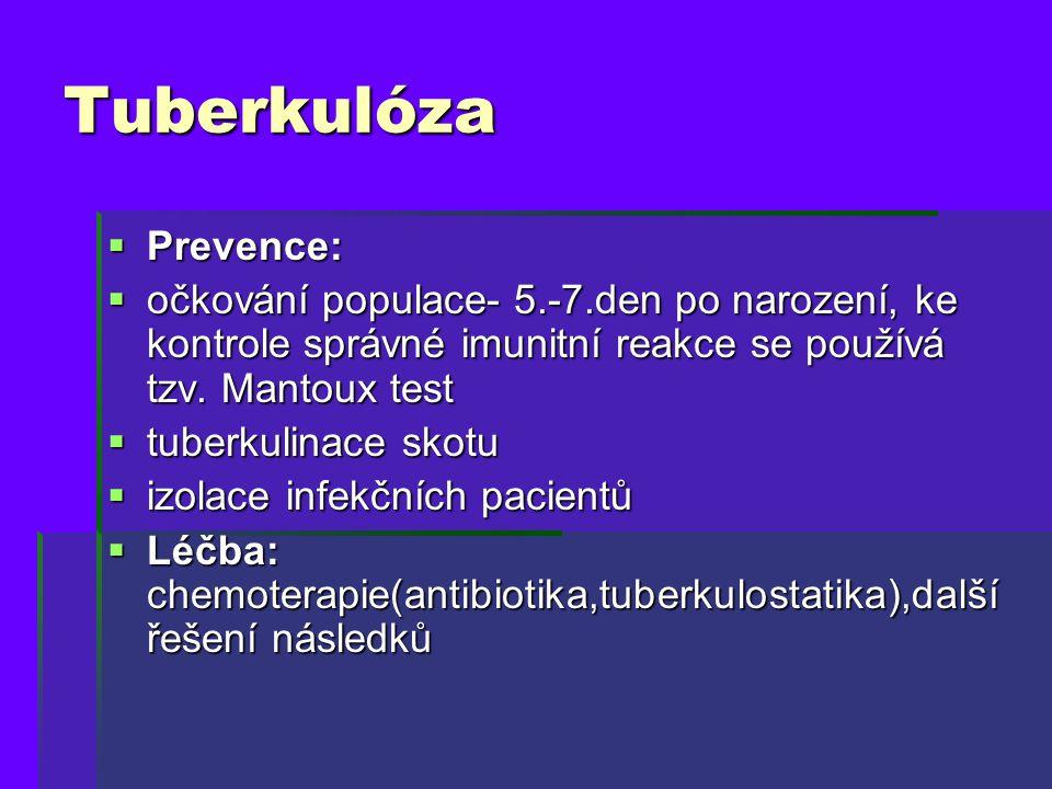 Tuberkulóza Prevence: