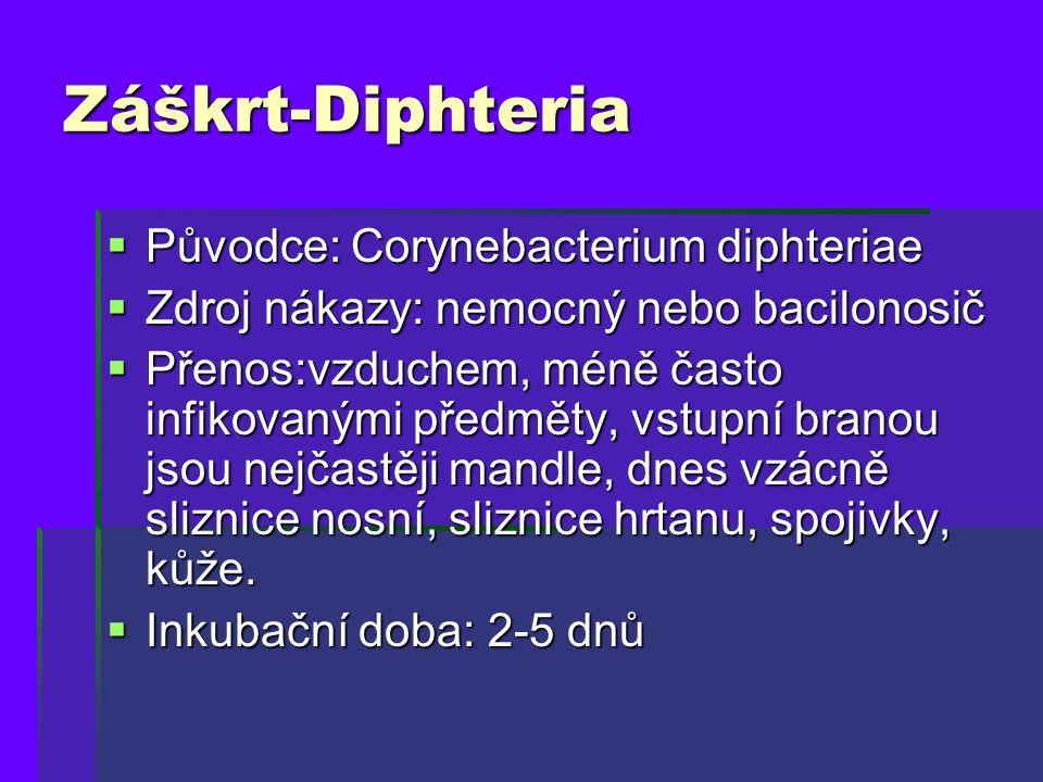 Záškrt-Diphteria Původce: Corynebacterium diphteriae