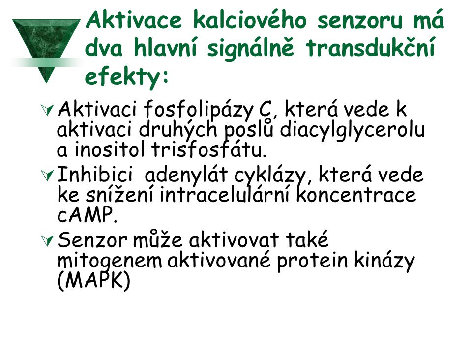 Aktivace kalciového senzoru má dva hlavní signálně transdukční efekty: