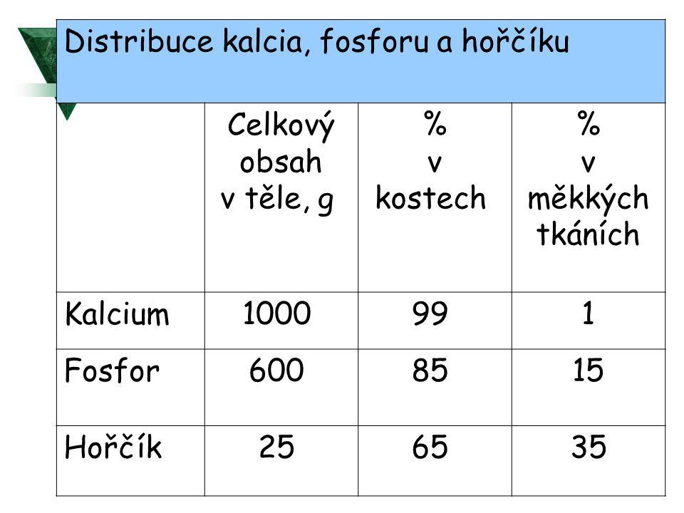Distribuce kalcia, fosforu a hořčíku