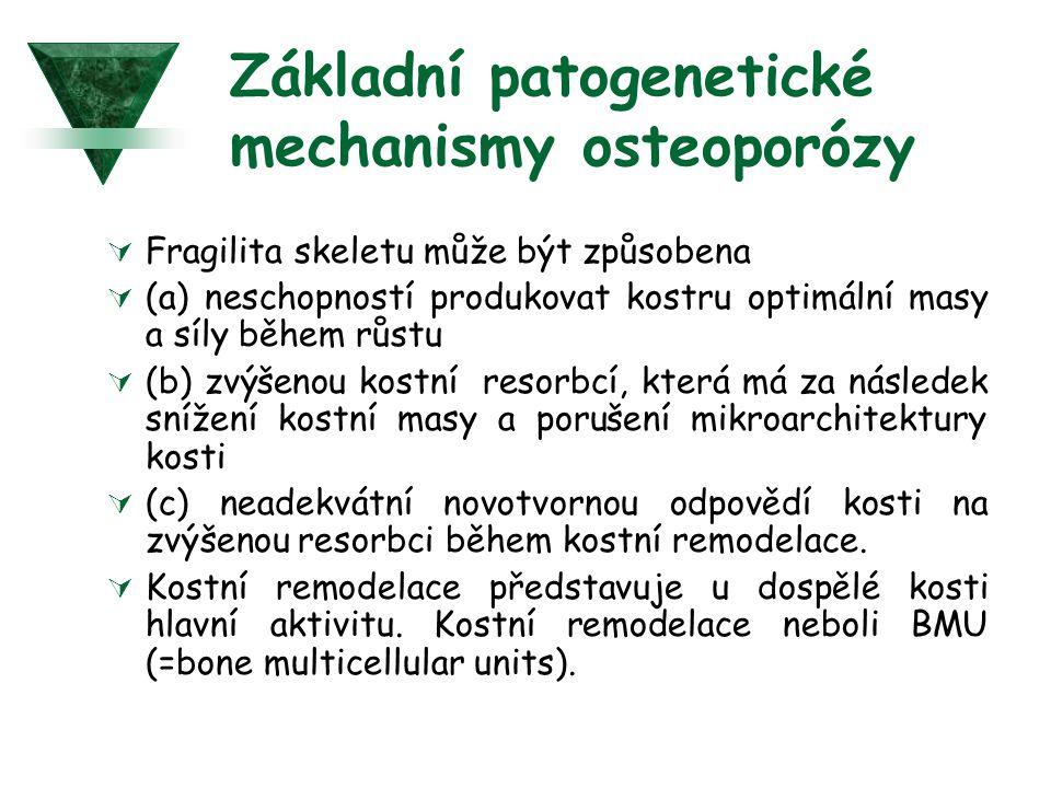 Základní patogenetické mechanismy osteoporózy