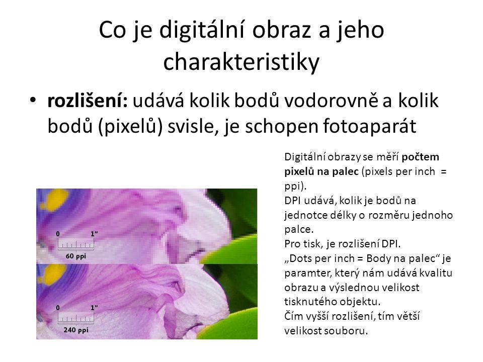 Co je digitální obraz a jeho charakteristiky