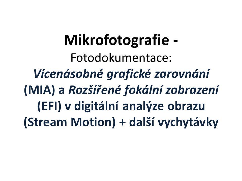 Mikrofotografie - Fotodokumentace: Vícenásobné grafické zarovnání (MIA) a Rozšířené fokální zobrazení (EFI) v digitální analýze obrazu (Stream Motion) + další vychytávky