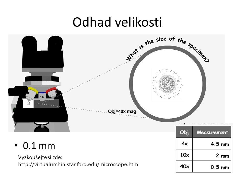 Odhad velikosti 0.1 mm Vyzkoušejte si zde: