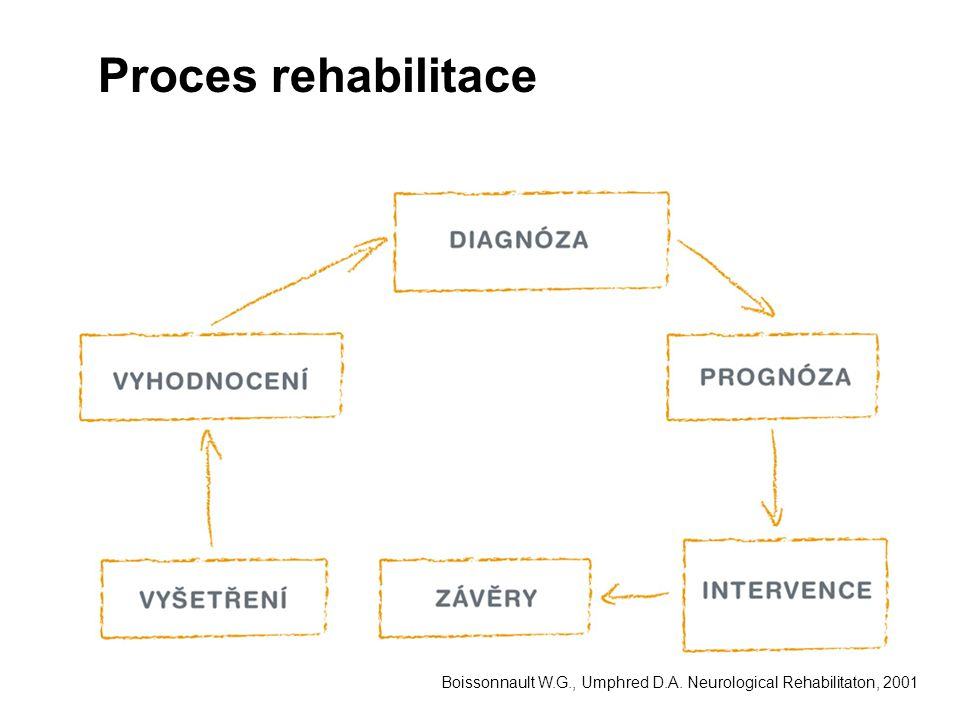 Proces rehabilitace Boissonnault W.G., Umphred D.A. Neurological Rehabilitaton, 2001