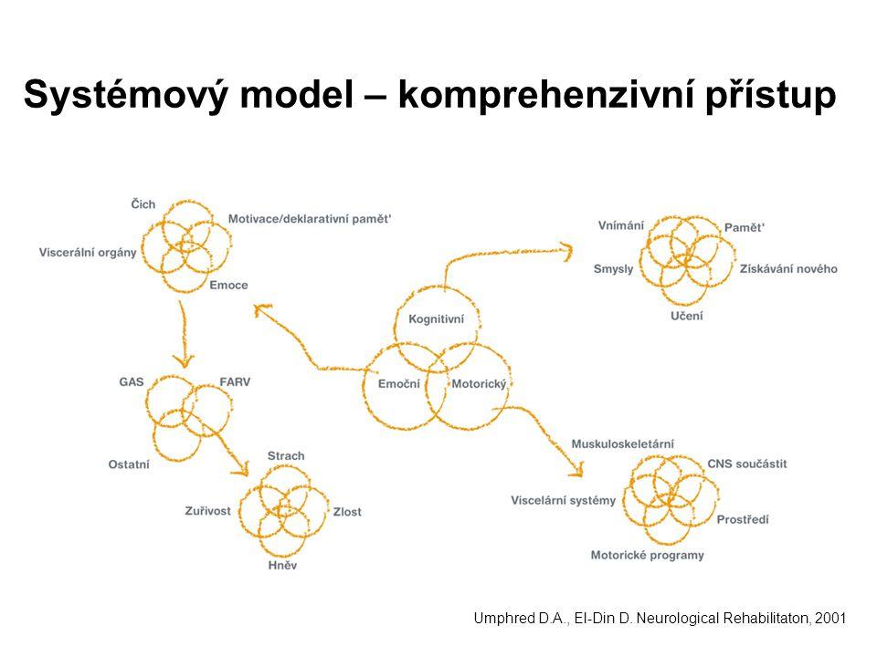 Systémový model – komprehenzivní přístup