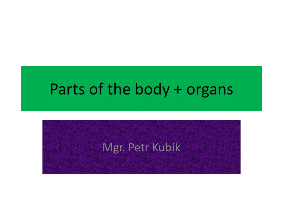 Parts of the body + organs