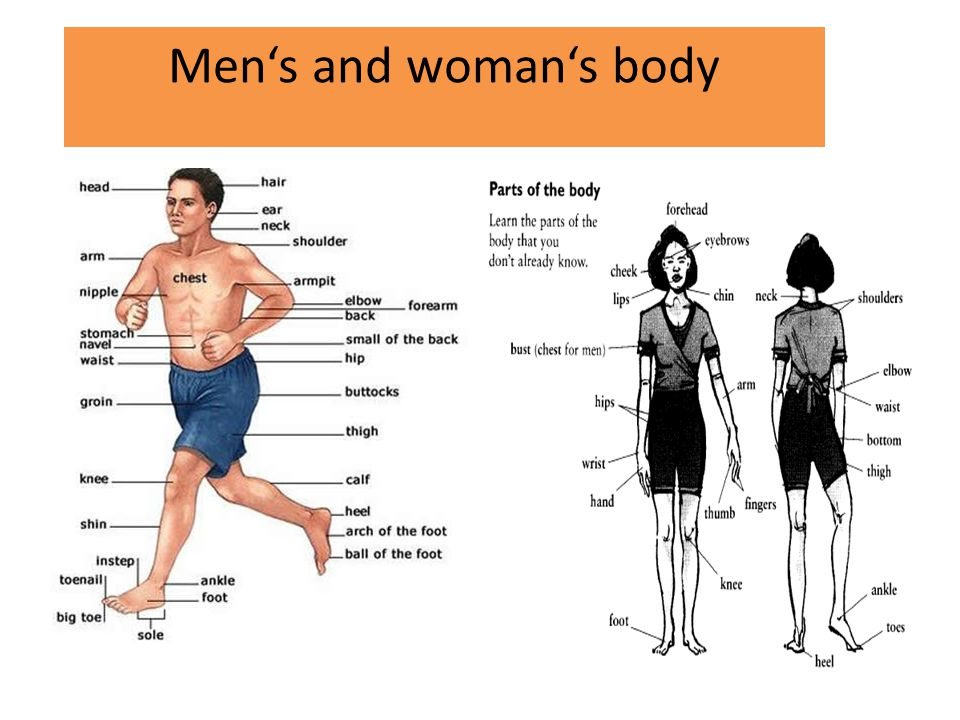 Men's and woman's body