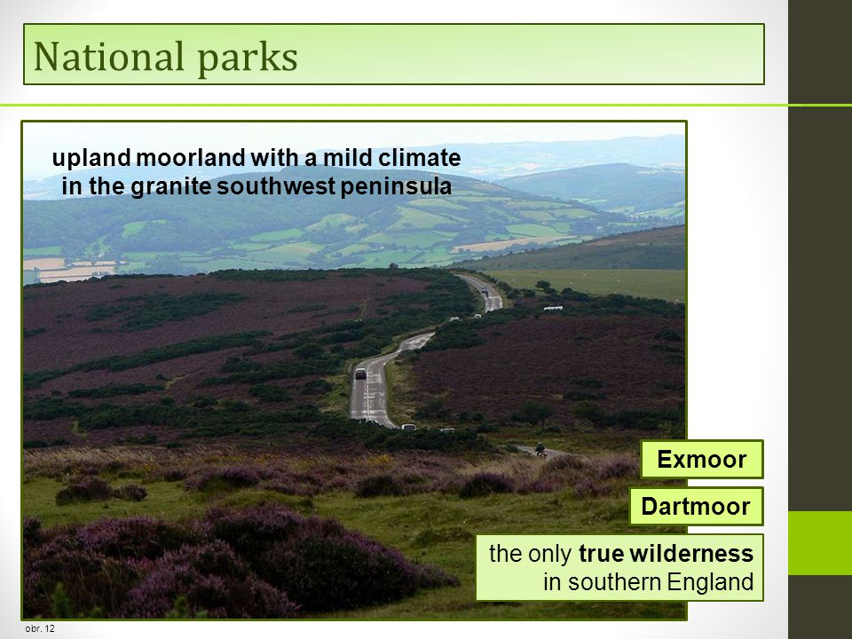 upland moorland with a mild climate in the granite southwest peninsula