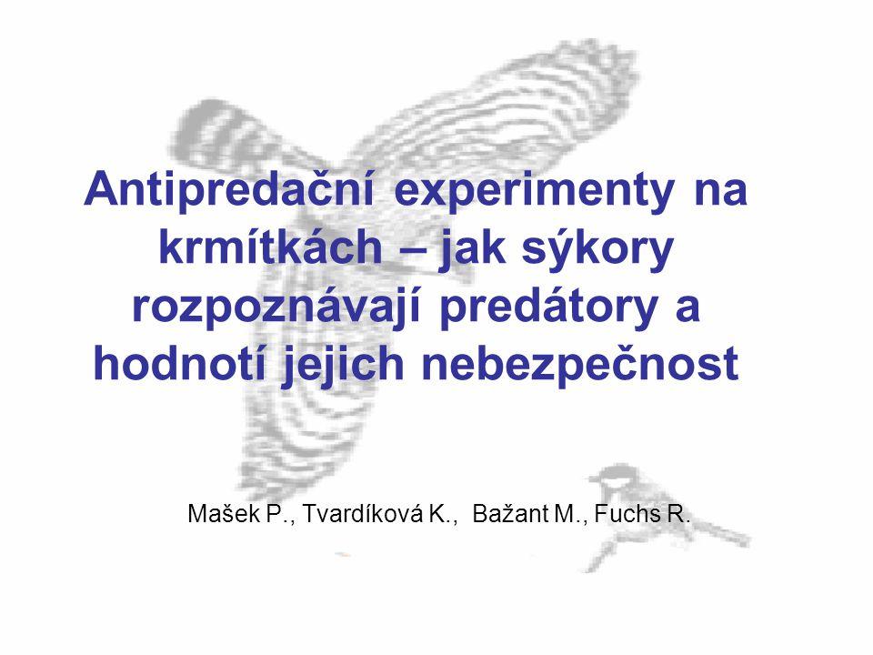 Mašek P., Tvardíková K., Bažant M., Fuchs R.