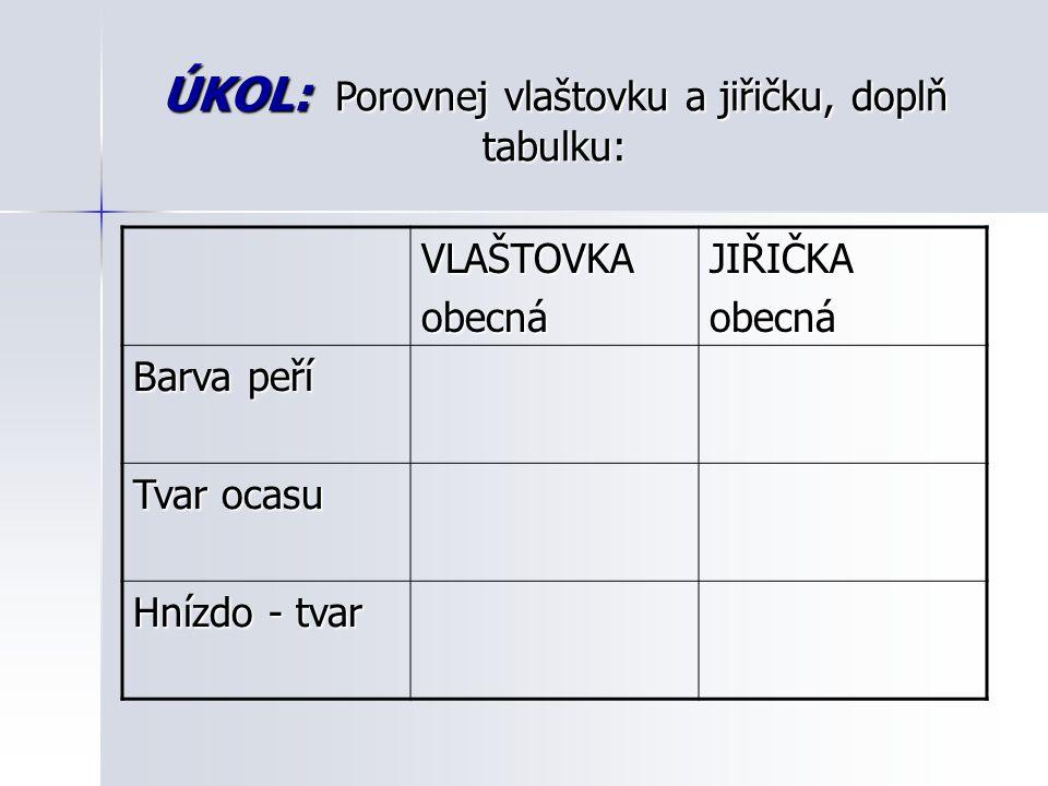 ÚKOL: Porovnej vlaštovku a jiřičku, doplň tabulku: