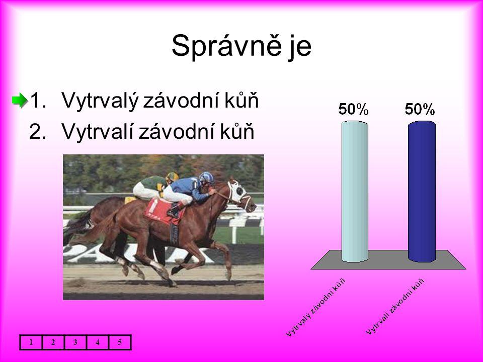 Správně je Vytrvalý závodní kůň Vytrvalí závodní kůň 1 2 3 4 5