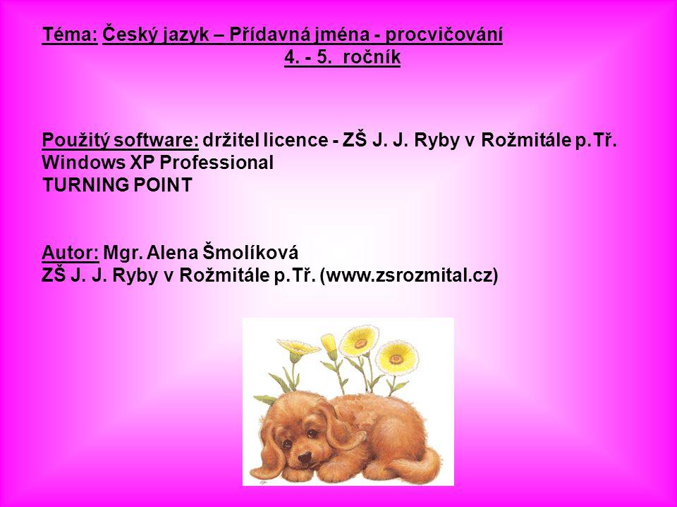 Téma: Český jazyk – Přídavná jména - procvičování