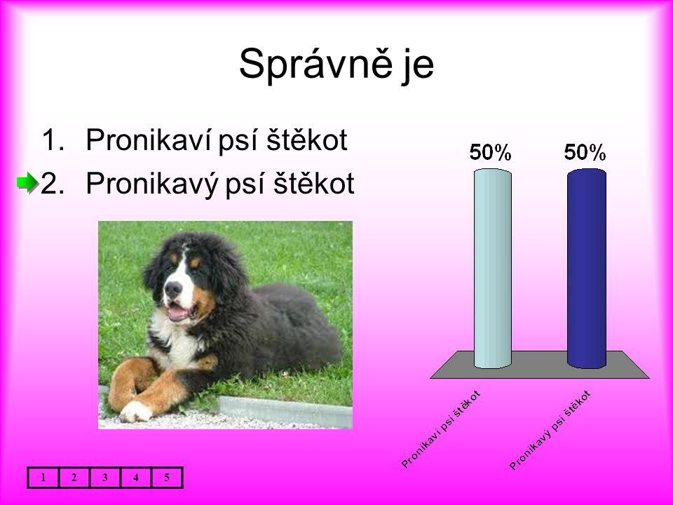 Správně je Pronikaví psí štěkot Pronikavý psí štěkot 1 2 3 4 5