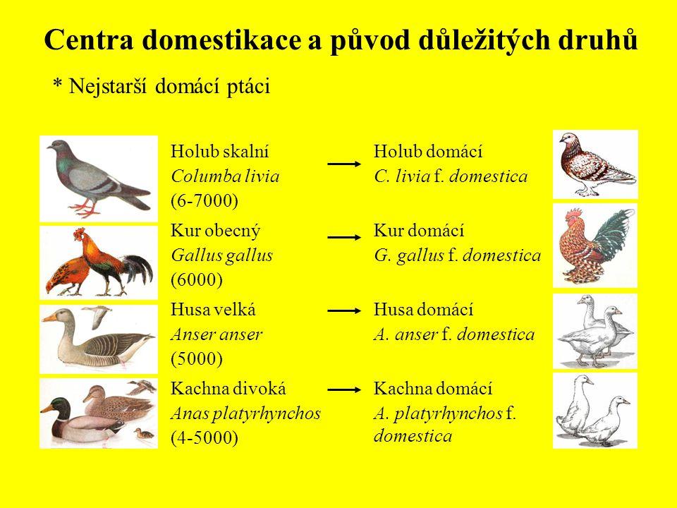 Centra domestikace a původ důležitých druhů
