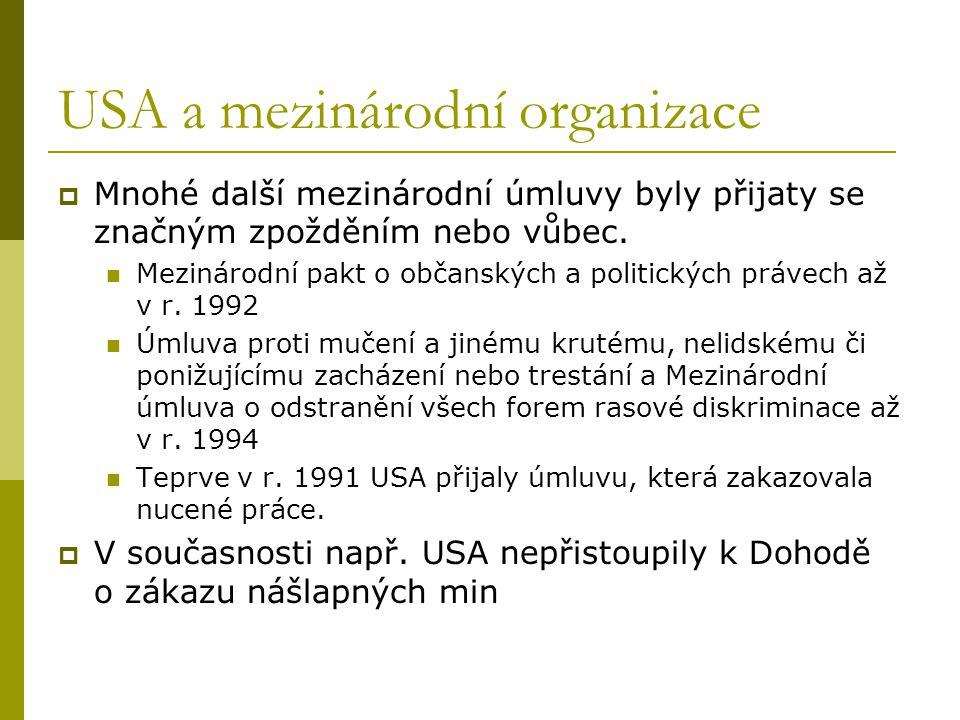 USA a mezinárodní organizace