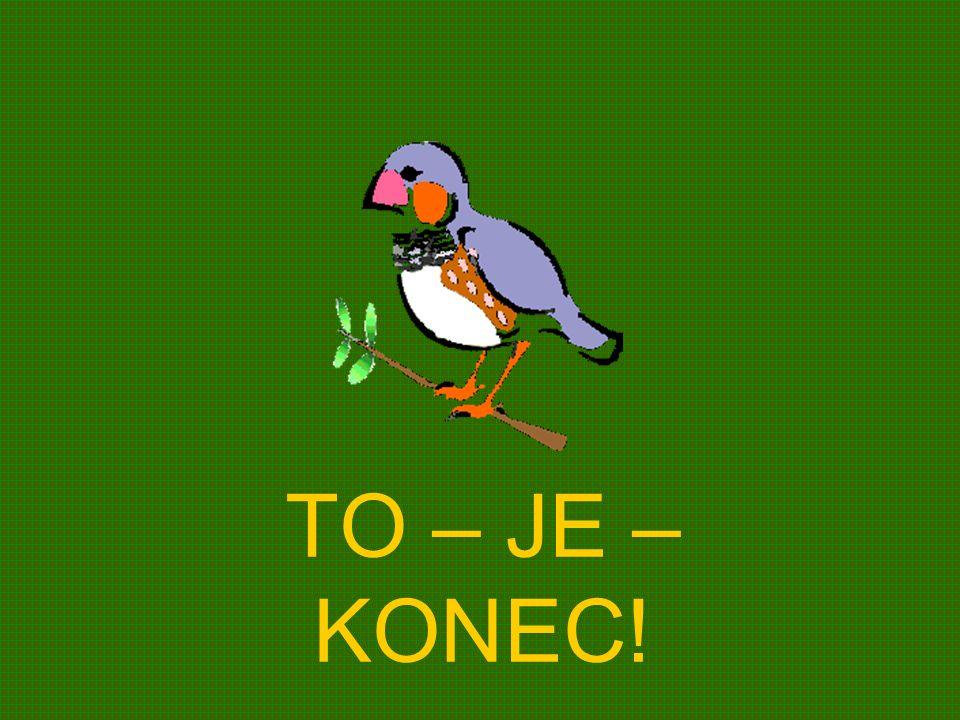 TO – JE – KONEC!