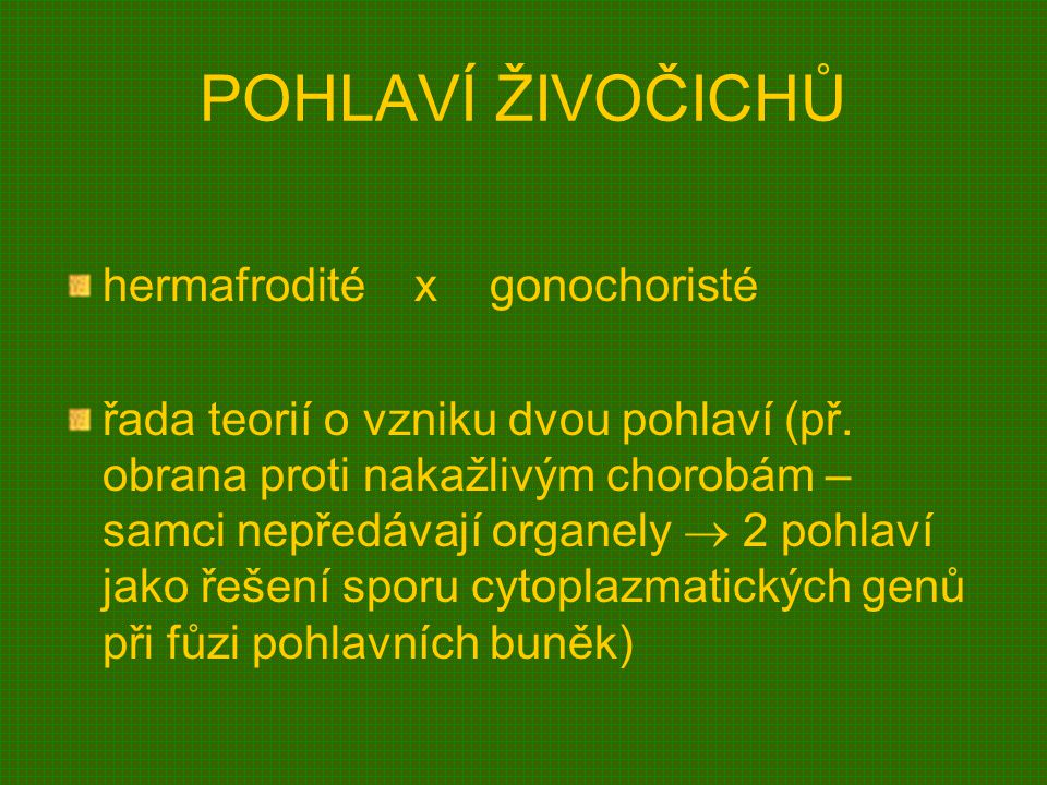 POHLAVÍ ŽIVOČICHŮ hermafrodité x gonochoristé