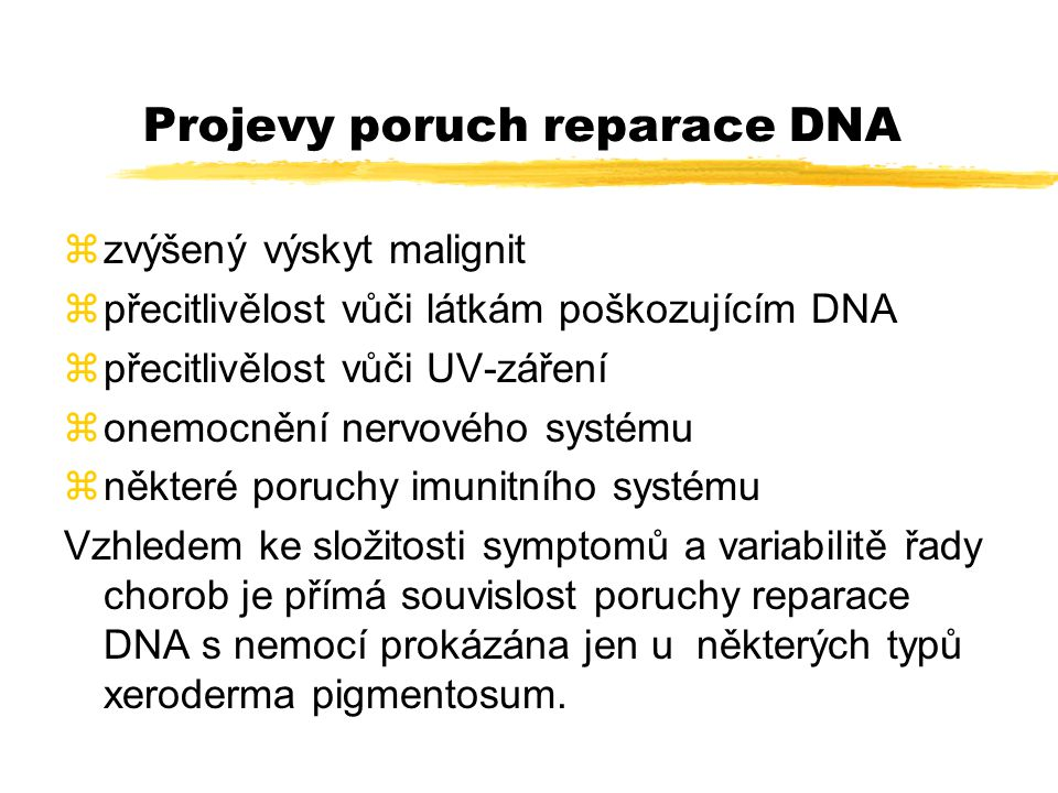 Projevy poruch reparace DNA