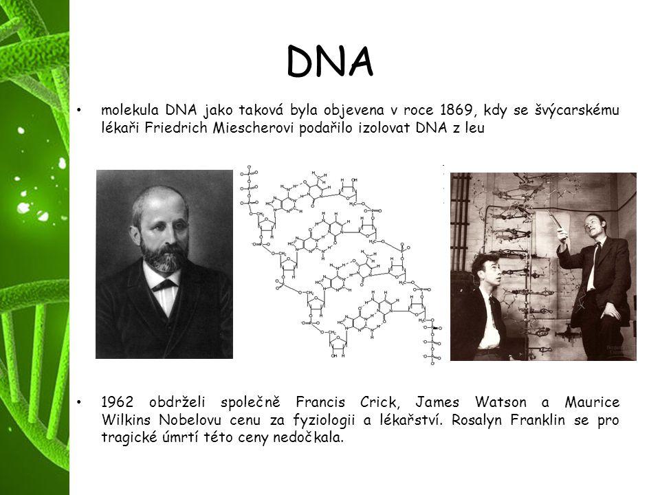 DNA molekula DNA jako taková byla objevena v roce 1869, kdy se švýcarskému lékaři Friedrich Miescherovi podařilo izolovat DNA z leu.
