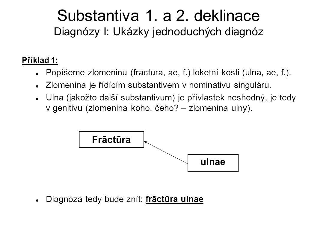 Substantiva 1. a 2. deklinace Diagnózy I: Ukázky jednoduchých diagnóz