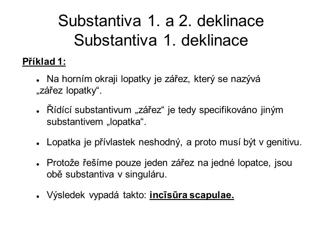 Substantiva 1. a 2. deklinace Substantiva 1. deklinace