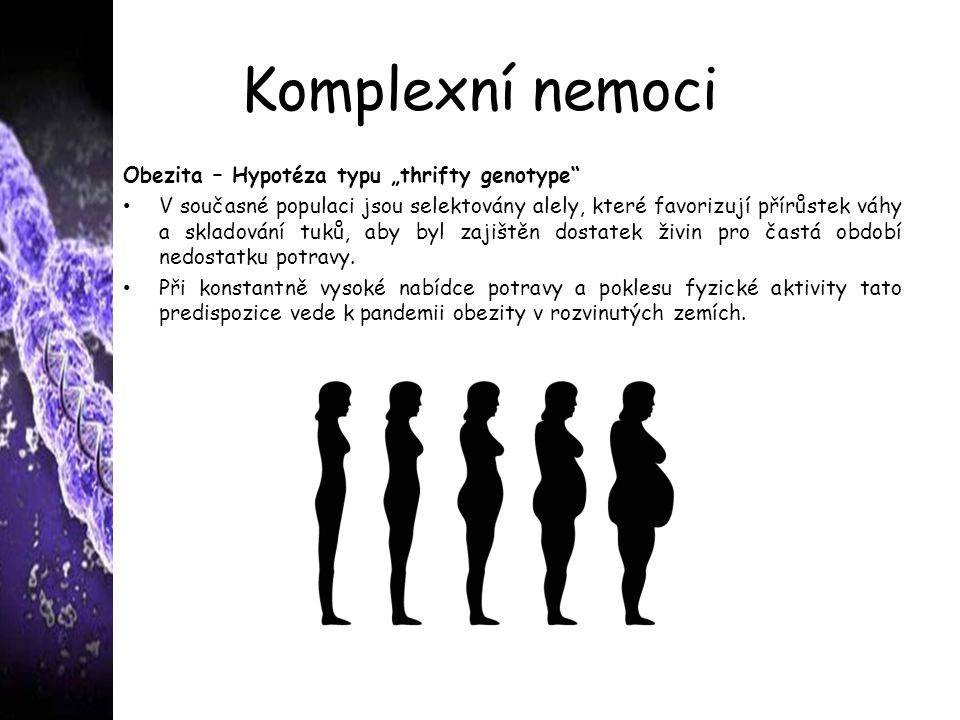 """Komplexní nemoci Obezita – Hypotéza typu """"thrifty genotype"""