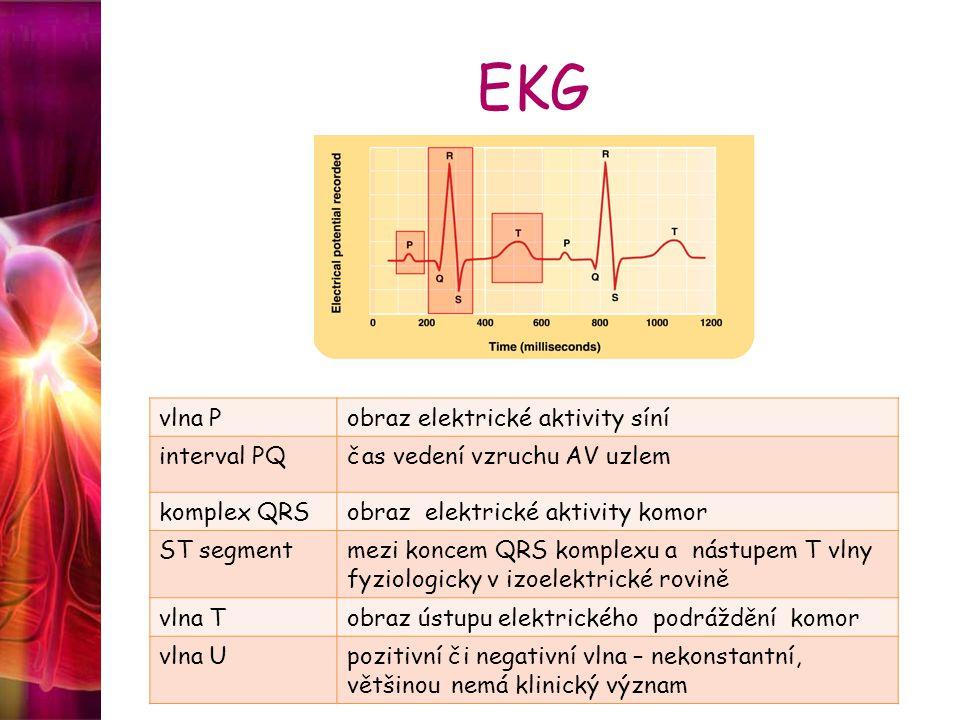 EKG vlna P obraz elektrické aktivity síní interval PQ