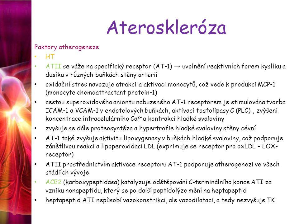 Ateroskleróza Faktory atherogeneze HT
