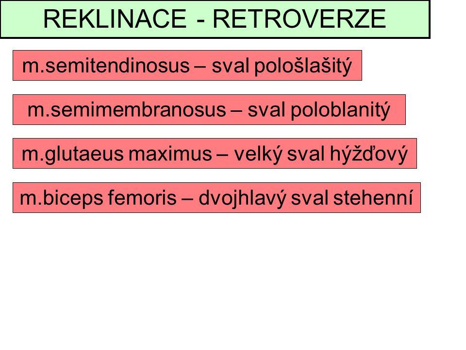 REKLINACE - RETROVERZE