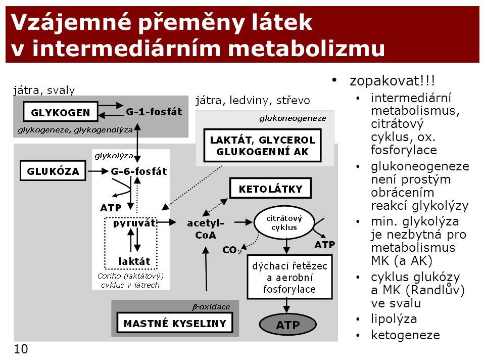 Vzájemné přeměny látek v intermediárním metabolizmu