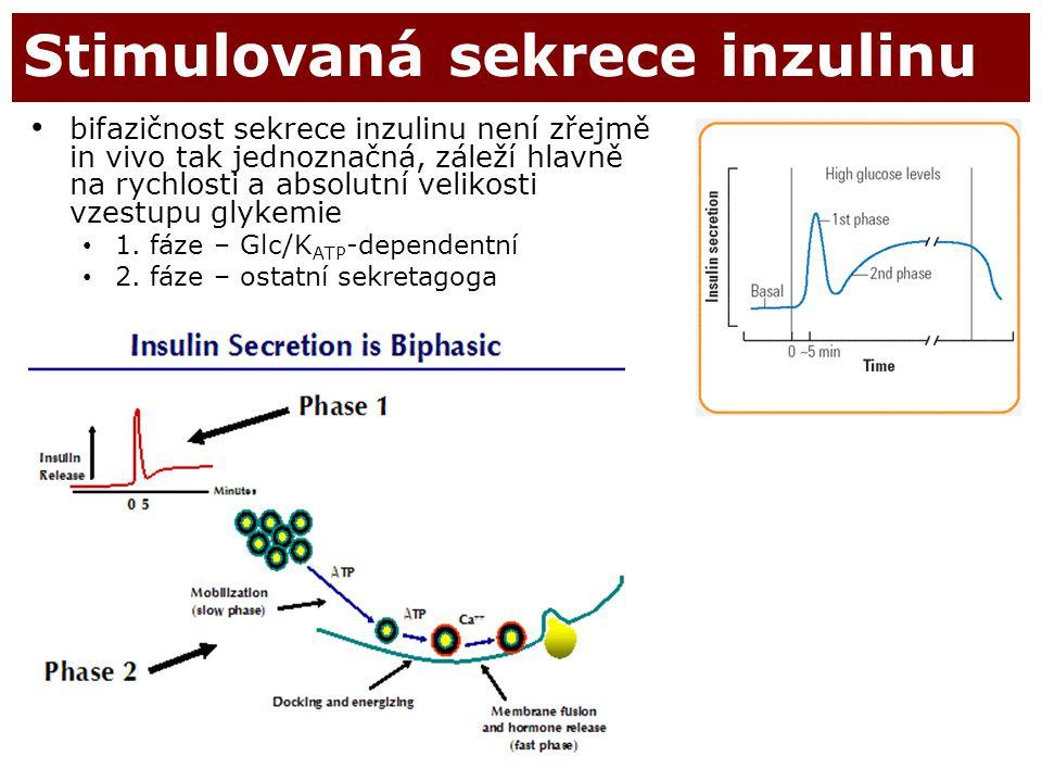 Stimulovaná sekrece inzulinu