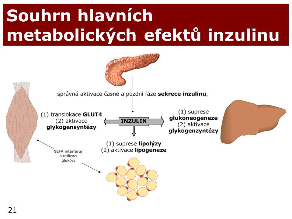 Souhrn hlavních metabolických efektů inzulinu