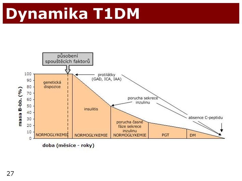 Dynamika T1DM