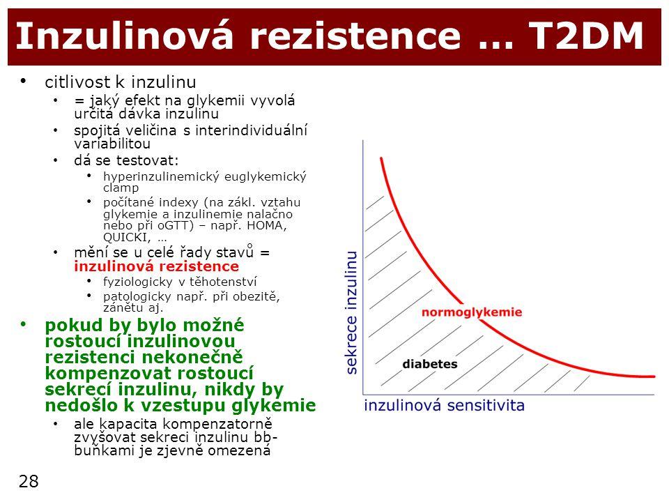 Inzulinová rezistence … T2DM