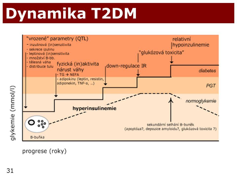 Dynamika T2DM
