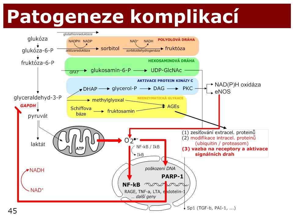Patogeneze komplikací