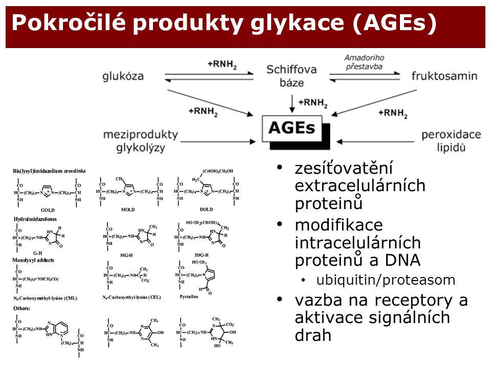 Pokročilé produkty glykace (AGEs)