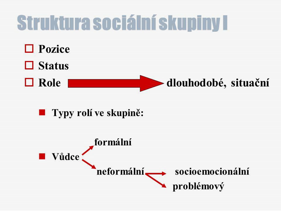 Struktura sociální skupiny I
