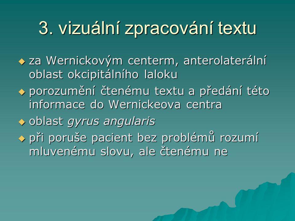3. vizuální zpracování textu