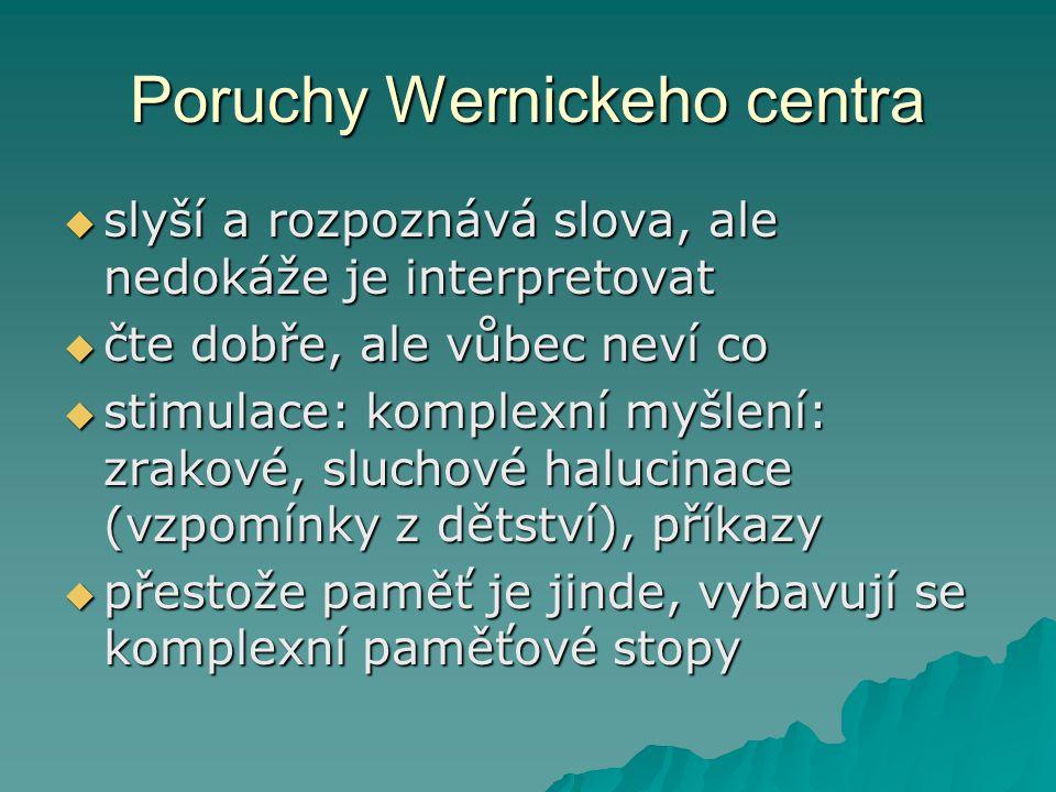 Poruchy Wernickeho centra