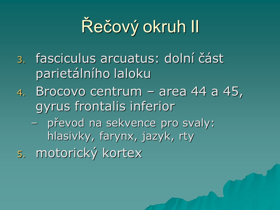 Řečový okruh II fasciculus arcuatus: dolní část parietálního laloku
