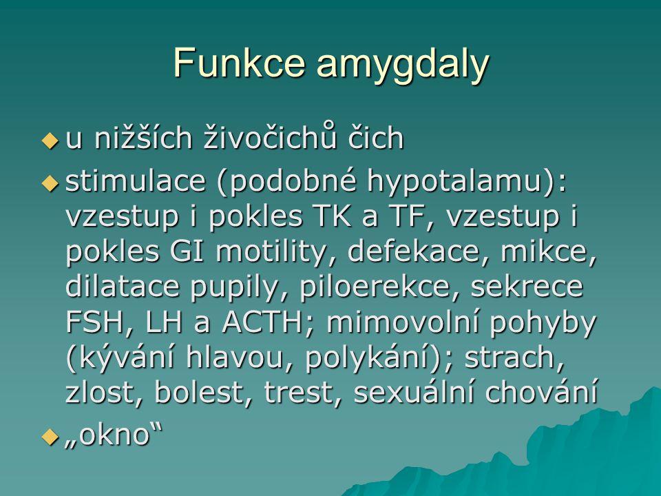 Funkce amygdaly u nižších živočichů čich