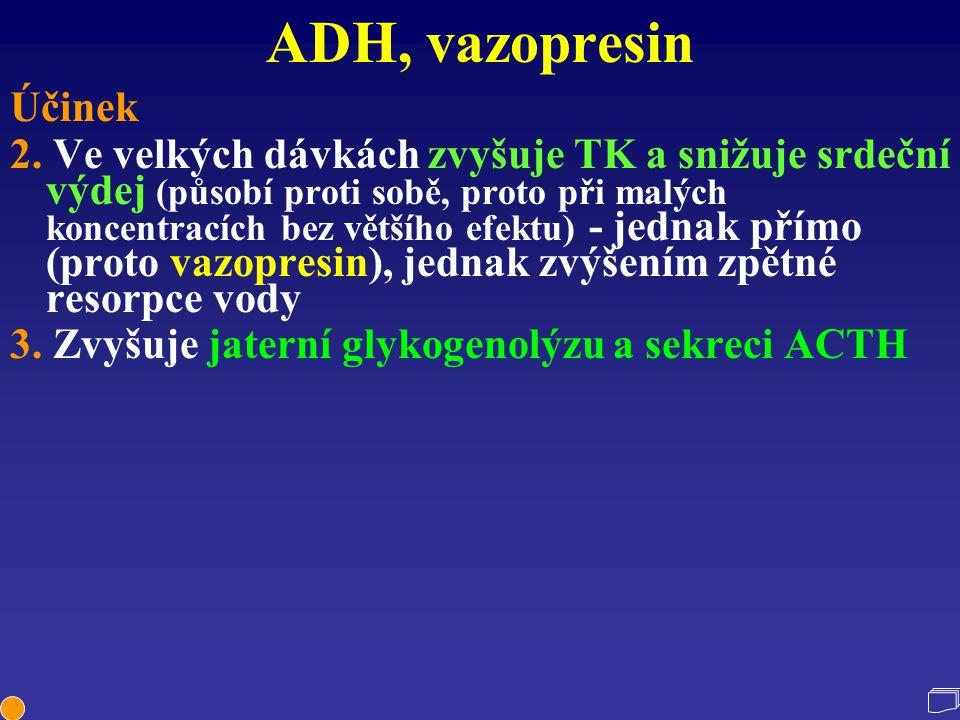 ADH, vazopresin Účinek.
