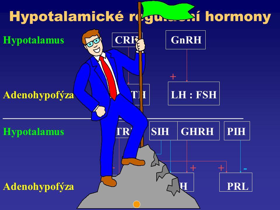 Hypotalamické regulační hormony